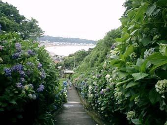 Kamakura_Jojuin.JPG